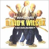 David Wilcox - Rockin' the Boogie: Best of Blues & Boogie