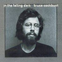 Liner Notes: Bruce Cockburn - In the Falling Dark